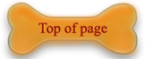 top of page